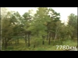 Ерофей Павлович - Хабаровск   7736 - 7810 км